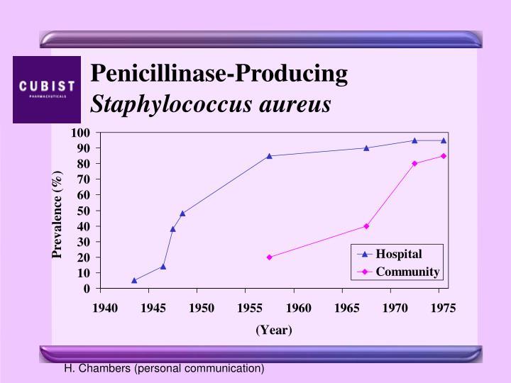 Penicillinase-Producing