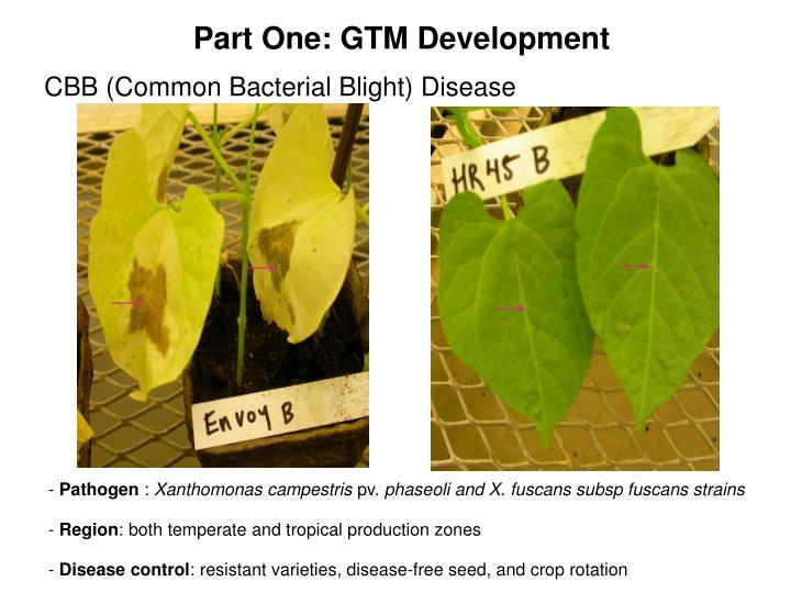Part One: GTM Development