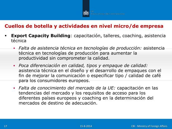 Cuellos de botella y actividades en nivel micro/de empresa