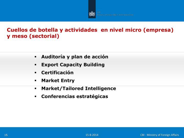 Cuellos de botella y actividades  en nivel micro (empresa)