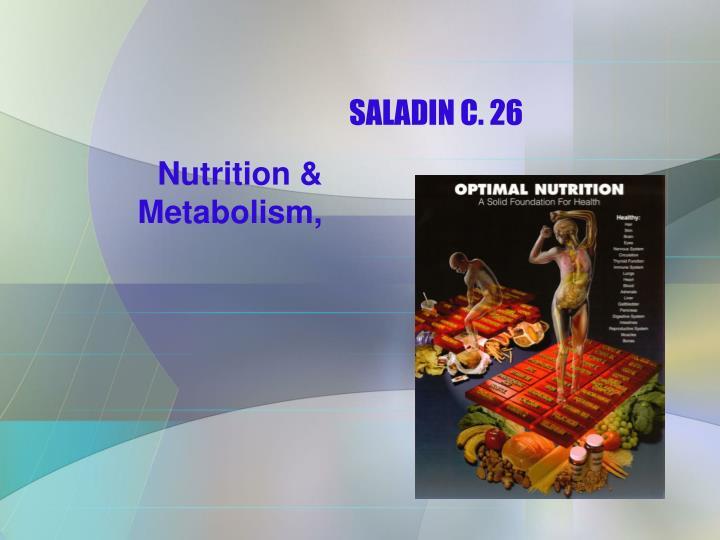 saladin c 26 n.