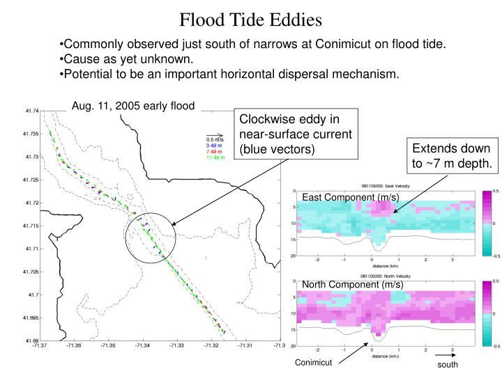 Flood Tide Eddies