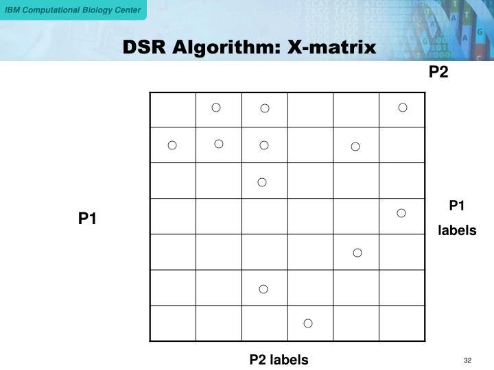 DSR Algorithm: X-matrix