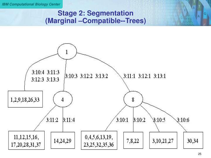 Stage 2: Segmentation