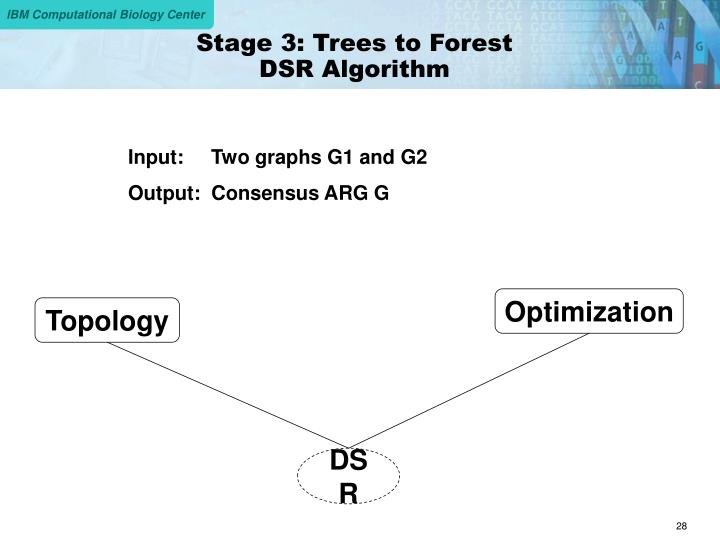 Stage 3: Trees to Forest