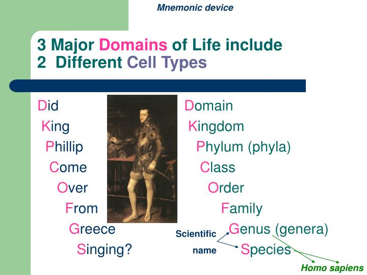 3 major domains of life include 2 different cell types