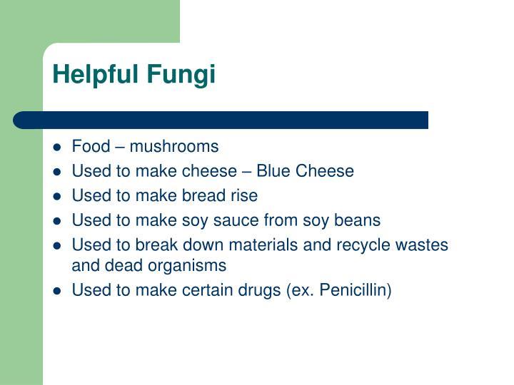 Helpful Fungi