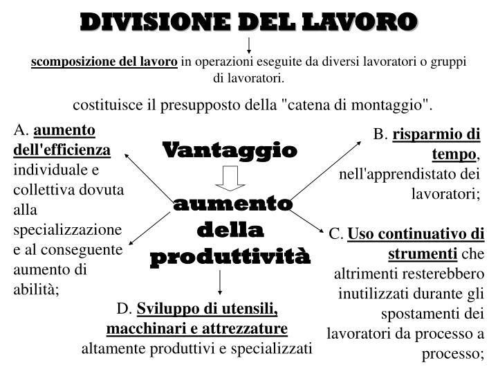 DIVISIONE DEL LAVORO