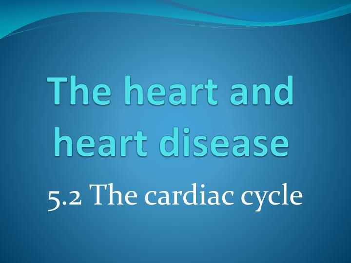 the heart and heart disease n.