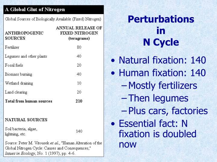Perturbations in n cycle