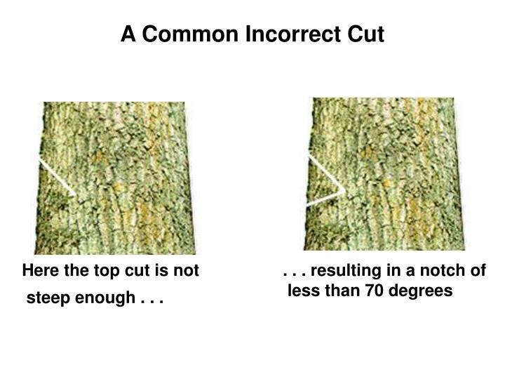 A Common Incorrect Cut