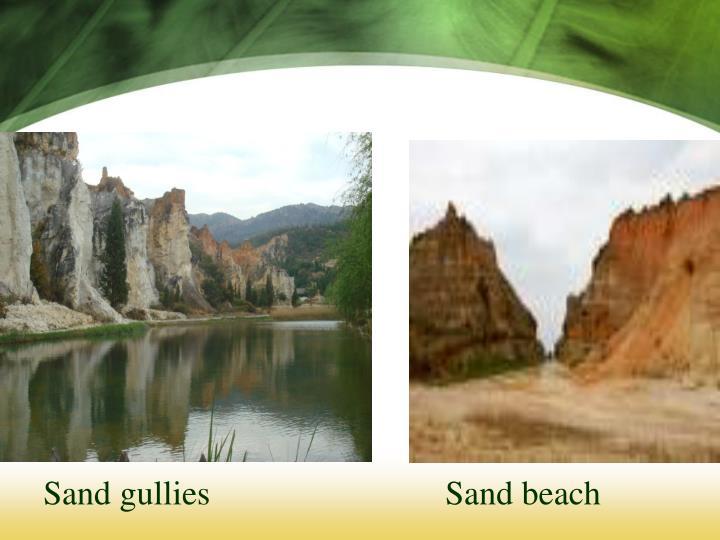 Sand gullies