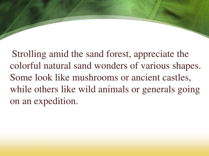 Strolling amid the sand forest, appreciate the colorful natural sand wonders of various shapes. Some look like mushrooms or ancient castles, while others like wild animals or generals going on an expedition.