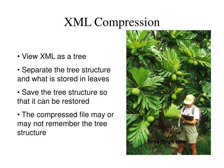 XML Compression