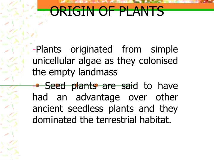origin of plants n.