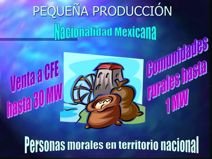 PEQUEÑA PRODUCCIÓN