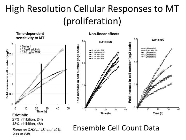 High resolution cellular responses to mt proliferation