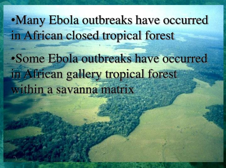Many Ebola outbreaks have occurred in African closed tropical forest