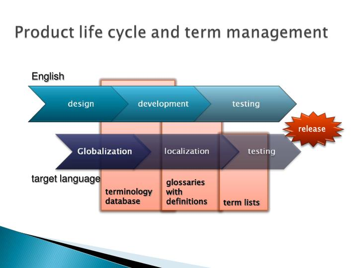 terminology database
