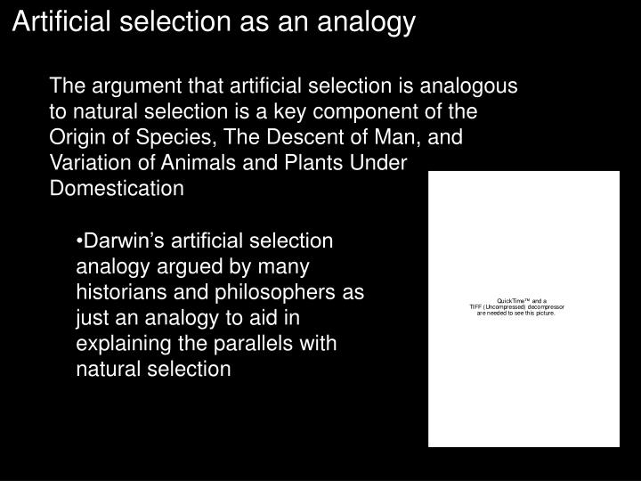 Artificial selection as an analogy