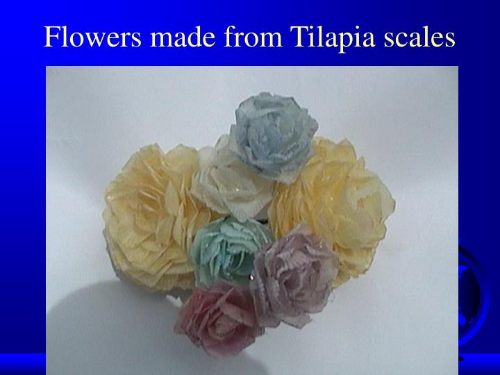 Flowers made from Tilapia scales