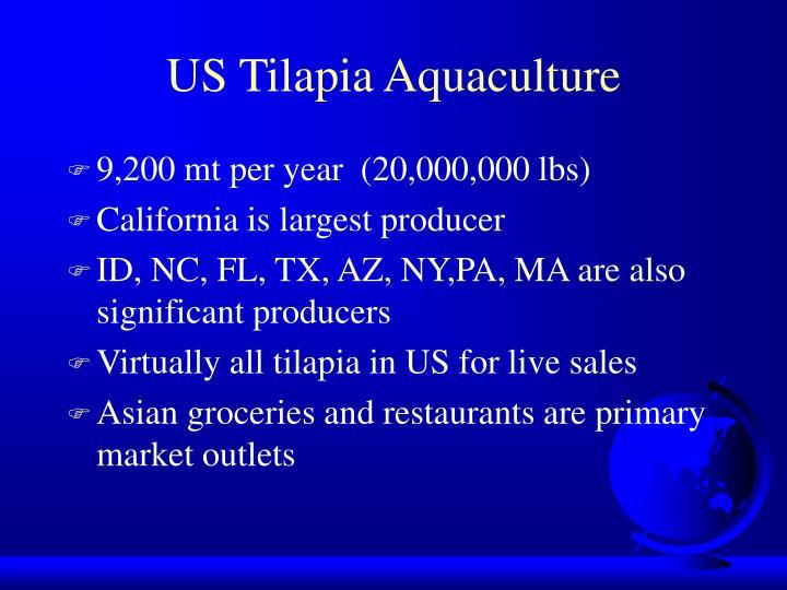 US Tilapia Aquaculture