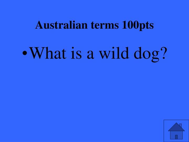 Australian terms 100pts1