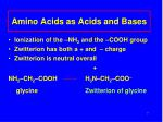 amino acids as acids and bases