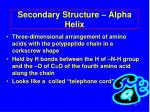 secondary structure alpha helix