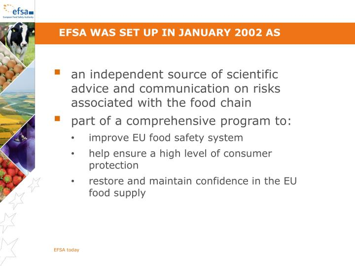 EFSA was set up in January 2002 as