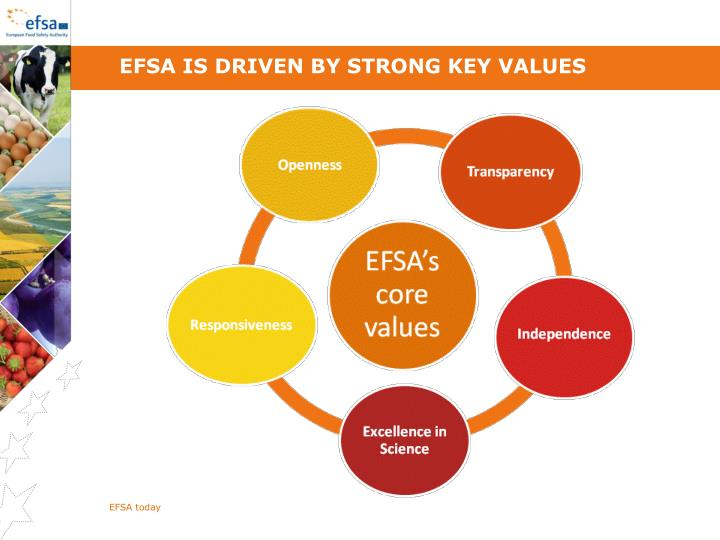 EFSA is driven by strong key values