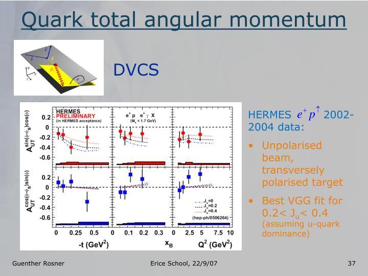 Quark total angular momentum