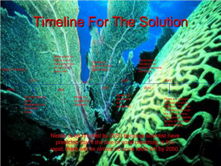 Timeline For The Solution
