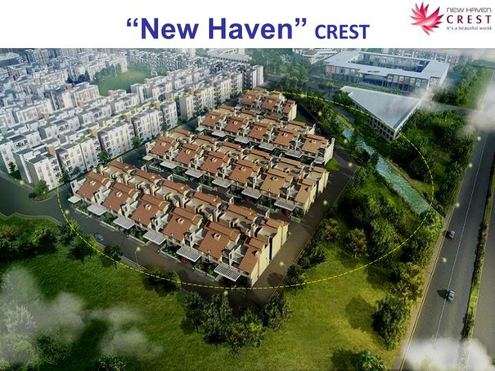new haven crest n.