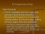 entrepreneurship2