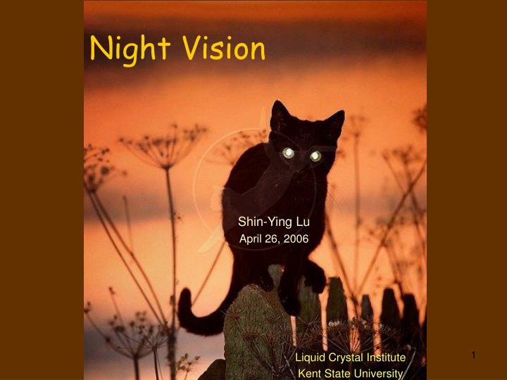 night vision n.