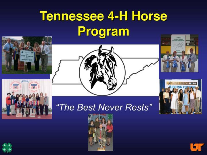 tennessee 4 h horse program n.