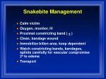 snakebite management