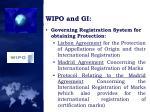wipo and gi1