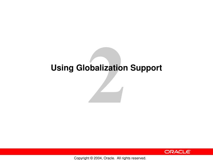 using globalization support n.
