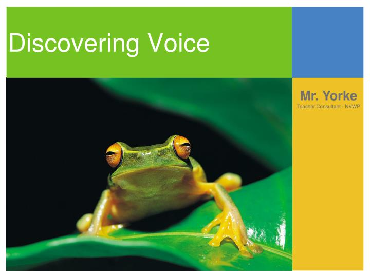 discovering voice n.