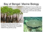 bay of bengal marine biology