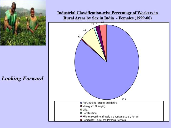 Industrial Classification-wise Percentage of Workers in Rural Areas by Sex in India  - Females (1999-00)