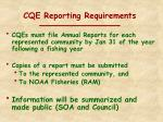 cqe reporting requirements