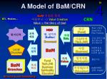 a model of bam crn