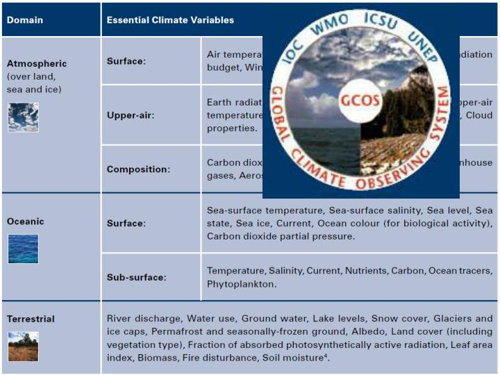 European Reanalysis and Observations for Monitoring