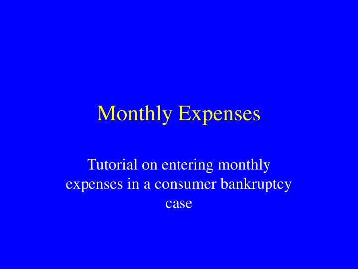 monthly expenses n.