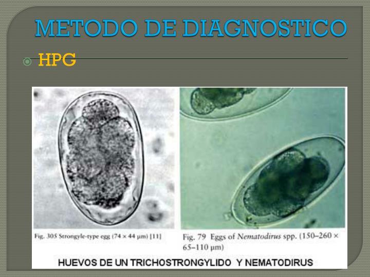 METODO DE DIAGNOSTICO