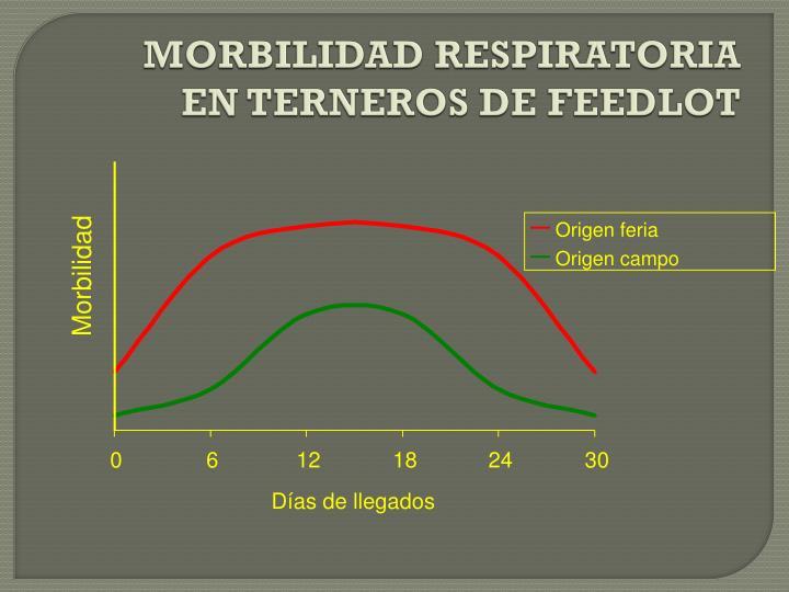 MORBILIDAD RESPIRATORIA EN TERNEROS DE FEEDLOT