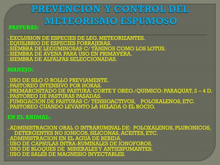 PREVENCION  Y CONTROL DEL METEORISMO ESPUMOSO